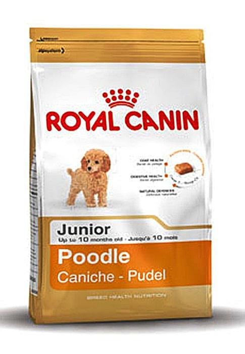 BHN Poodle Junior ลูกสุนัขสายพันธ์พุดเดิ้ล 500 กรัม
