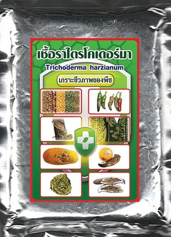 เชื้อราไตรโคเดอร์มา, ป้องกันและควบคุมโรคพืช,ฉีดพ่นทางใบ,ไตรโคเดอร์มา,เชื้อราเขียว,โรคพืช,การผลิตเชื้อราไตรโคเดอร์มา,ไตรโคเดอร์มาผง,หัวเชื้อไตรโคเดอร์มากำแพงแสน,เชื้อราไตรโคเดอร์มาในนาข้าว,บิวเวอร์เรีย,เมธาไรเซียม,พาซิโลมัยซิส การผลิตเชื้อราไตรโคเดอร์มา หัวเชื้อไตรโคเดอร์มา กําแพงแสน เชื้อราไตรโคเดอร์มาในนาข้าว ไตรโคเดอร์มา มะนาว ไตรโคเดอร์มา ผง เชื้อราไตรโคเดอร์มา pdf