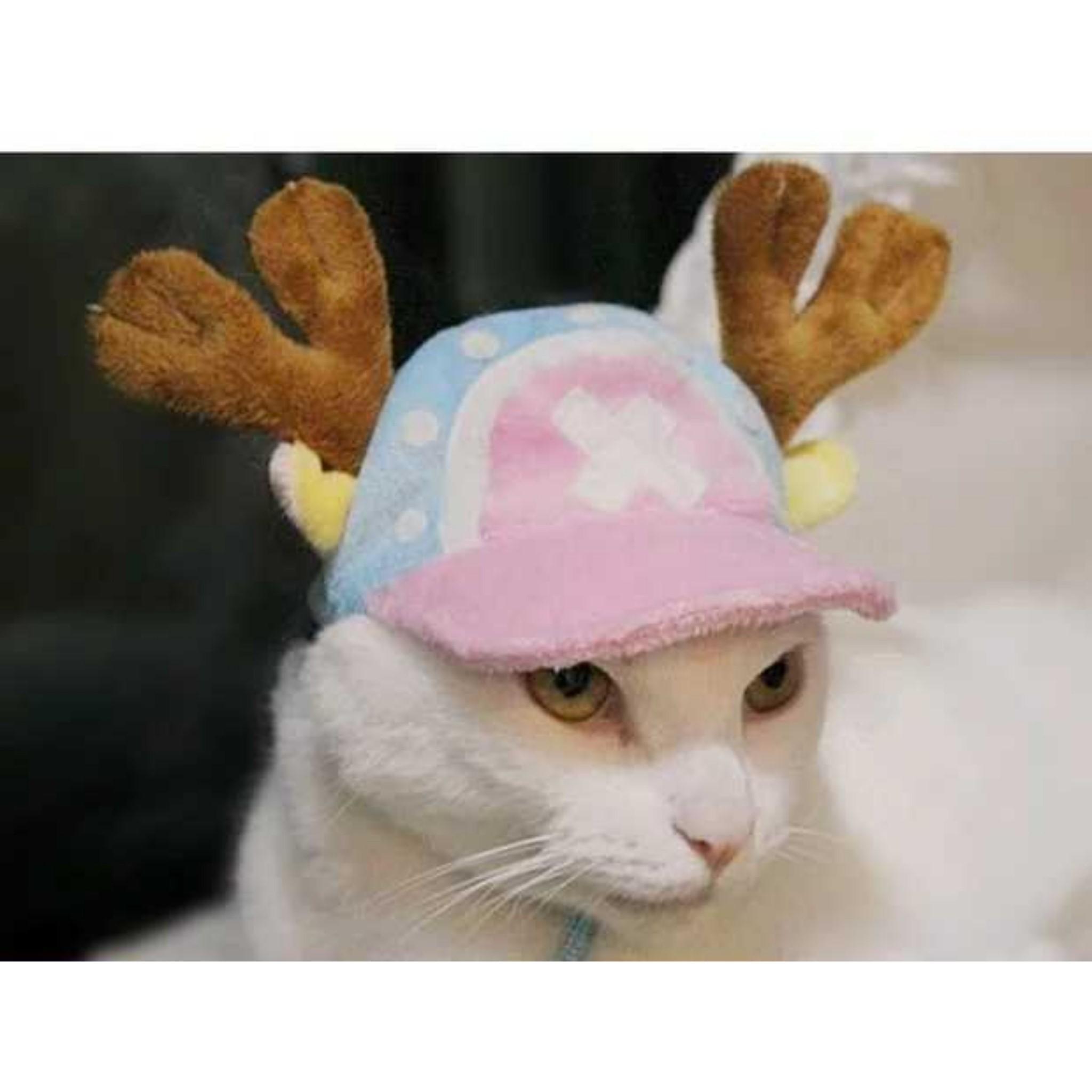 หมวกกวาง โทนี่โทนี่ช็อปเปอร์