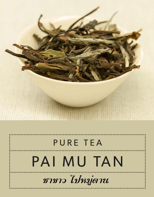 Pure Tea ชาขาว ไป๋ หมู่ ตาน (Pai Mu Tan) ออแกนิกส์ ถุง 100 กรัม