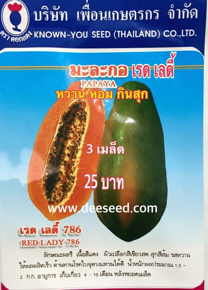 มะละกอเรด เลดี้ (PAPAYA RED LADY) 3 เมล็ด